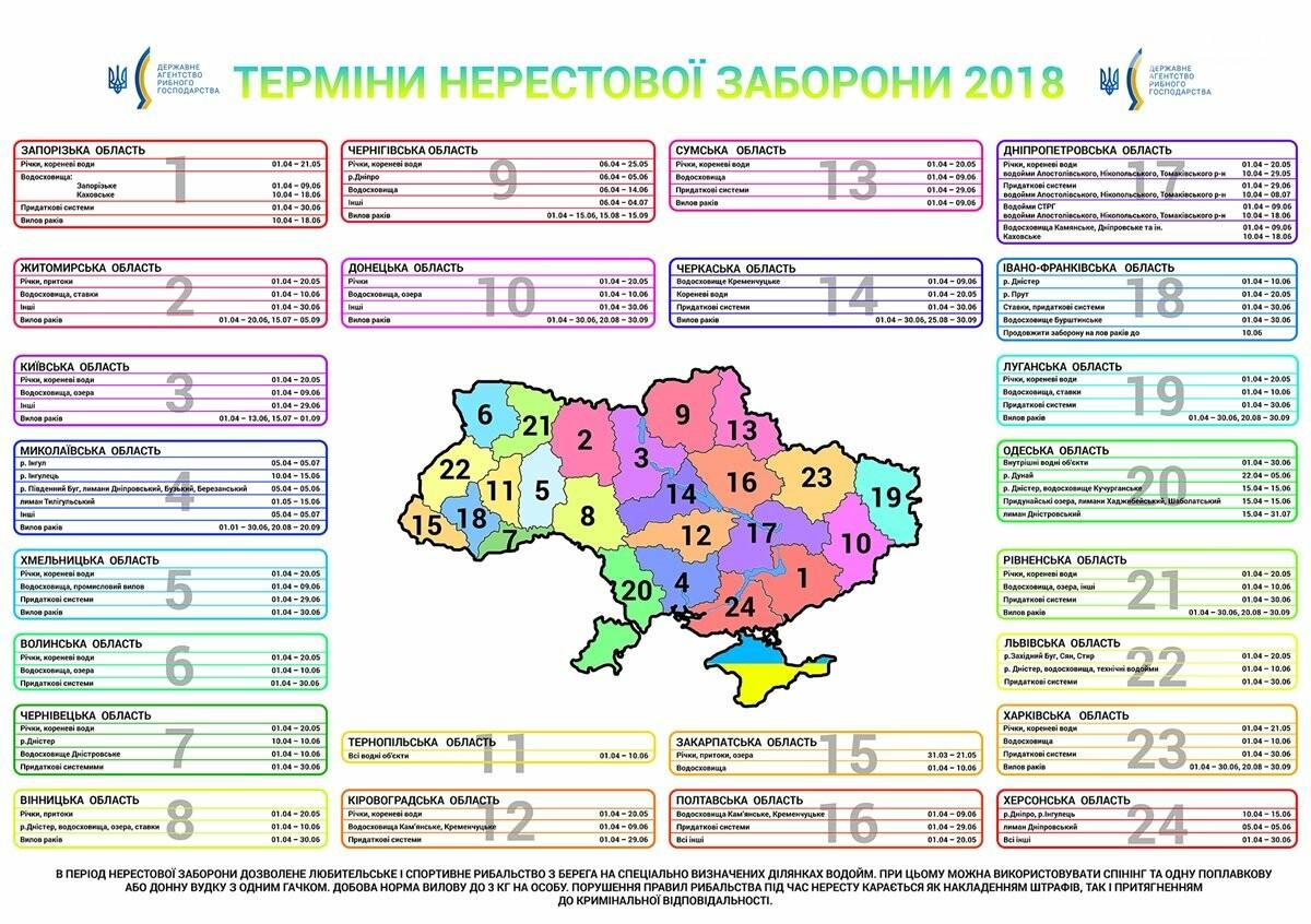 В Украине ввели запрет на вылов рыбы в связи с нерестом (ИНФОГРАФИКА), фото-1