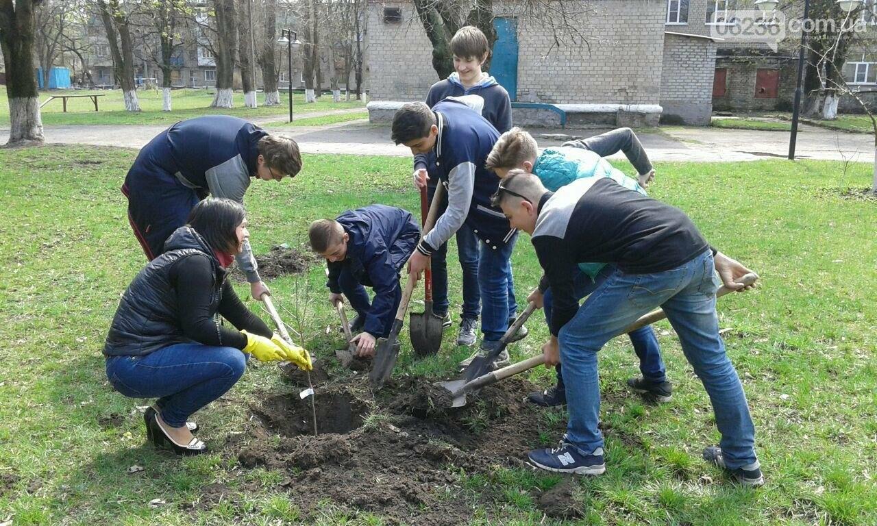 В Авдеевке  возрождают школьный сад (ФОТОФАКТ), фото-2