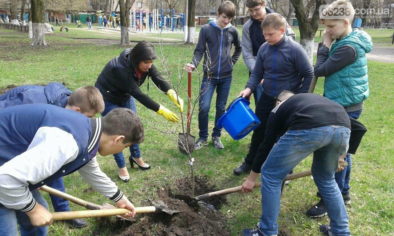 В Авдеевке  возрождают школьный сад (ФОТОФАКТ), фото-1