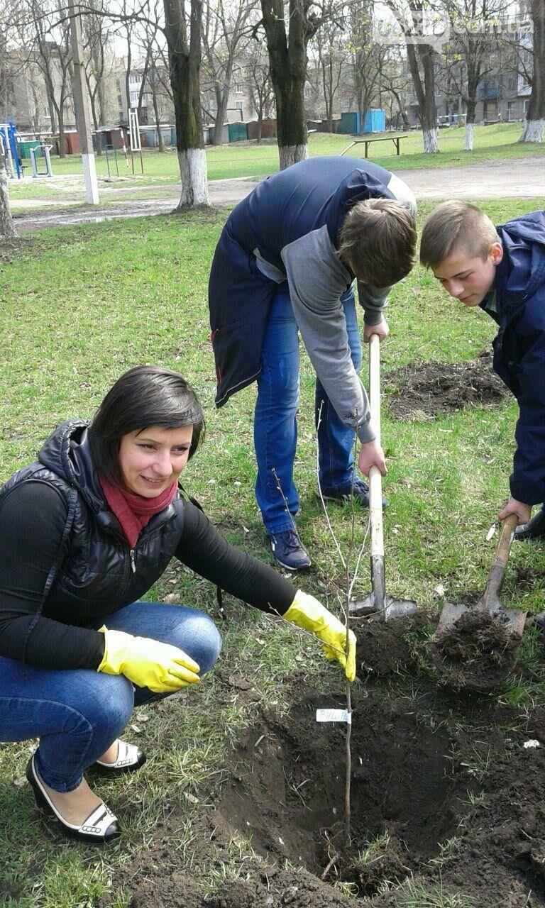 В Авдеевке  возрождают школьный сад (ФОТОФАКТ), фото-3