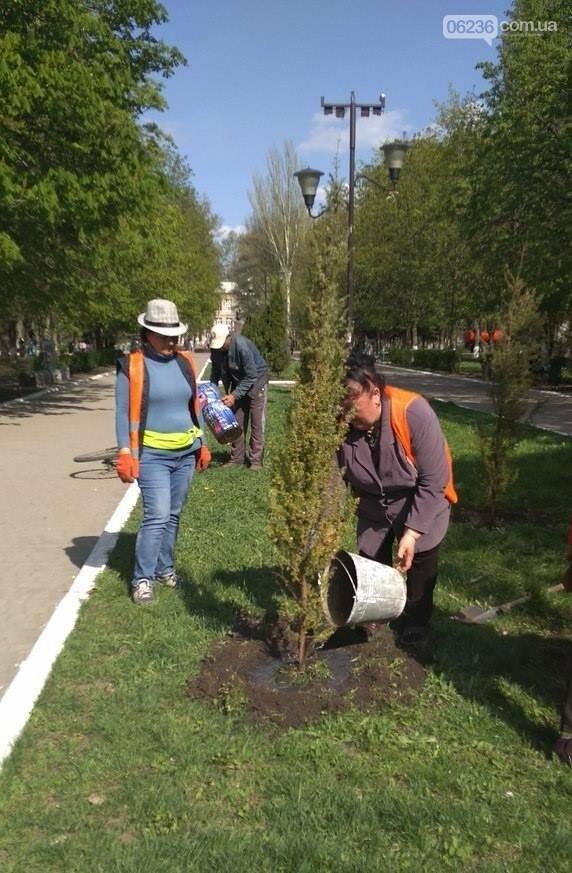 В Авдеевке приступили к массовой высадке деревьев (ФОТОФАКТ), фото-2
