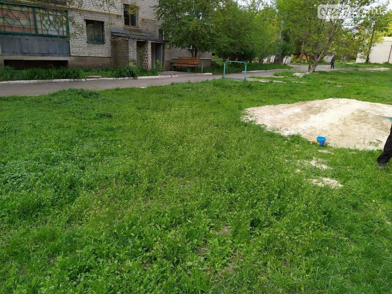 Благодаря конкурсу «Преобразим Авдеевку вместе!» в городе появится ещё одна игровая площадка для детворы, фото-4