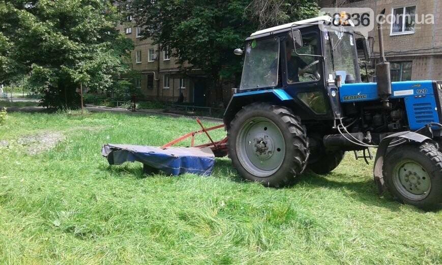 Авдеевские коммунальщики вышли на борьбу с травой (ФОТОФАКТ), фото-1