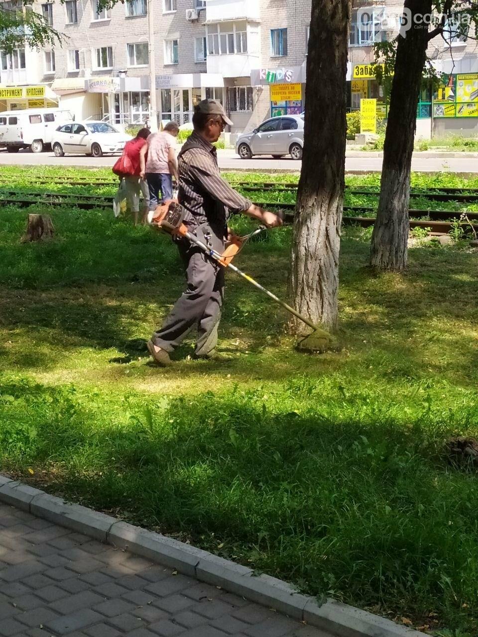 Авдеевские коммунальщики вышли на борьбу с травой (ФОТОФАКТ), фото-2