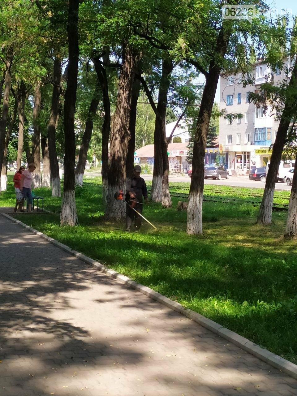 Авдеевские коммунальщики вышли на борьбу с травой (ФОТОФАКТ), фото-3