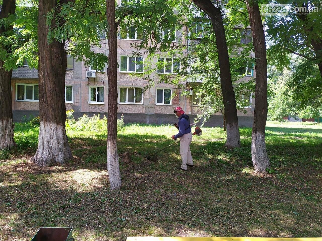 Авдеевские коммунальщики вышли на борьбу с травой (ФОТОФАКТ), фото-5
