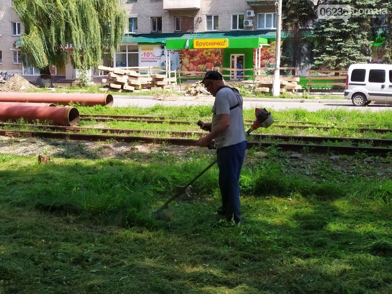 Авдеевские коммунальщики вышли на борьбу с травой (ФОТОФАКТ), фото-6