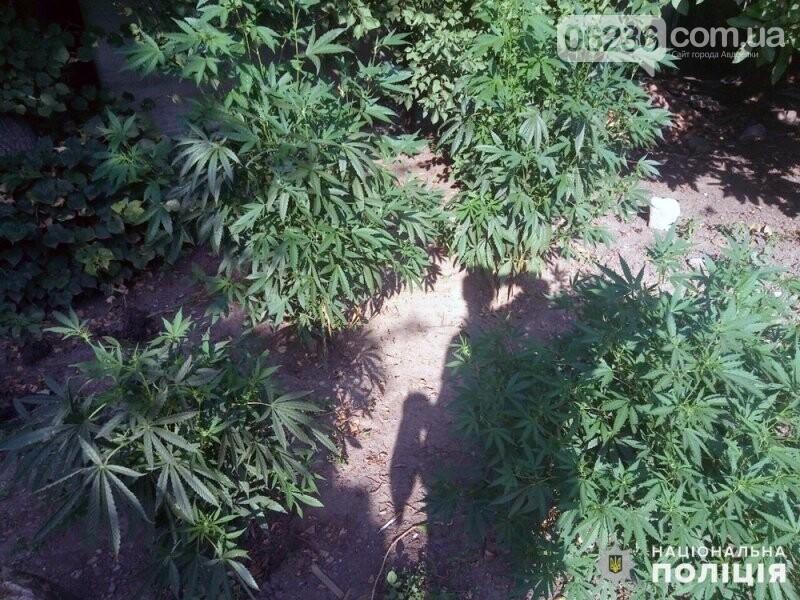 В Авдіївці копи виявили наркоаграрія та любителя конопель, фото-1