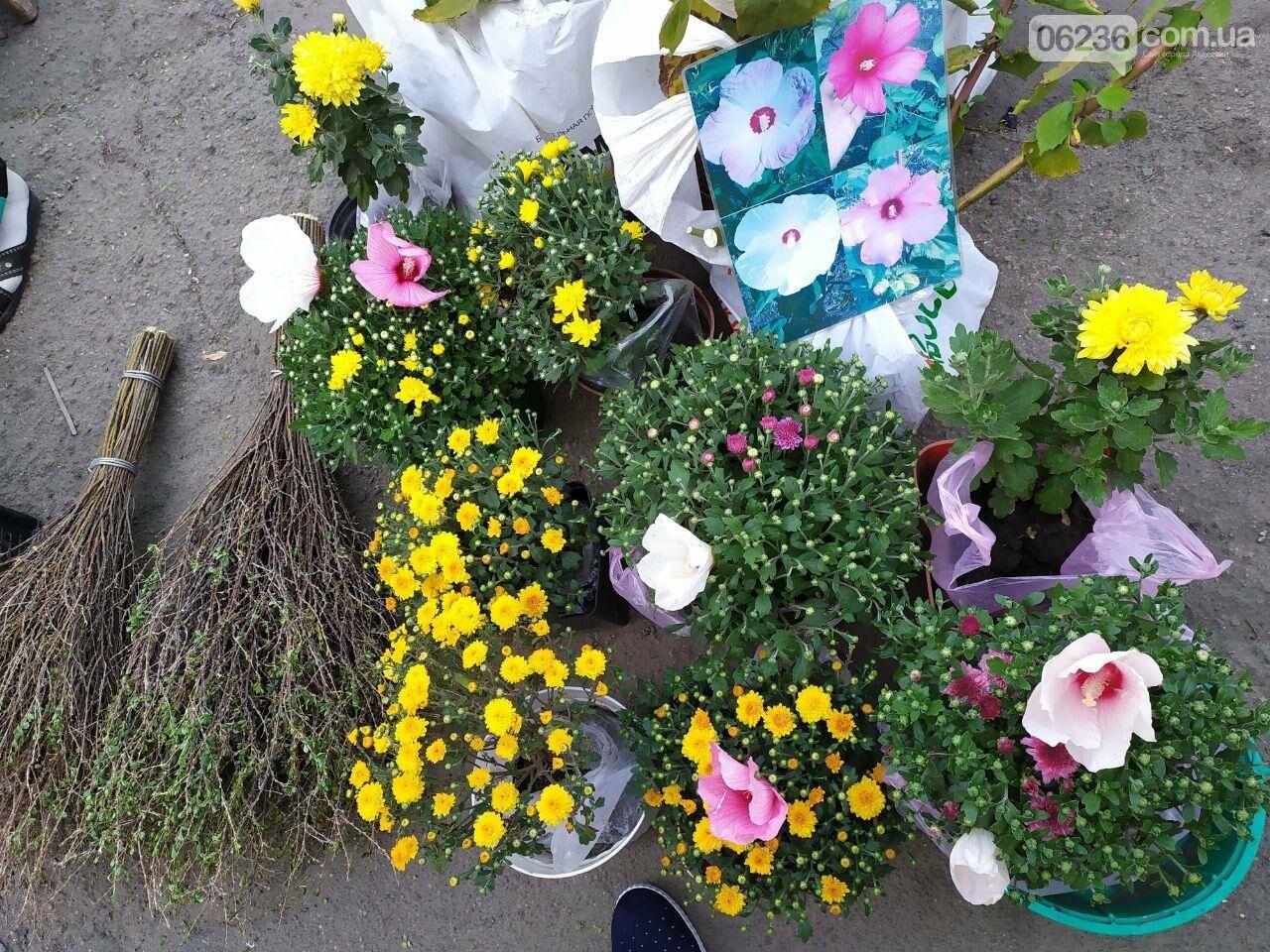 В Авдеевке провели ежегодную осеннюю ярмарку  ко Дню города (ФОТОФАКТ), фото-25