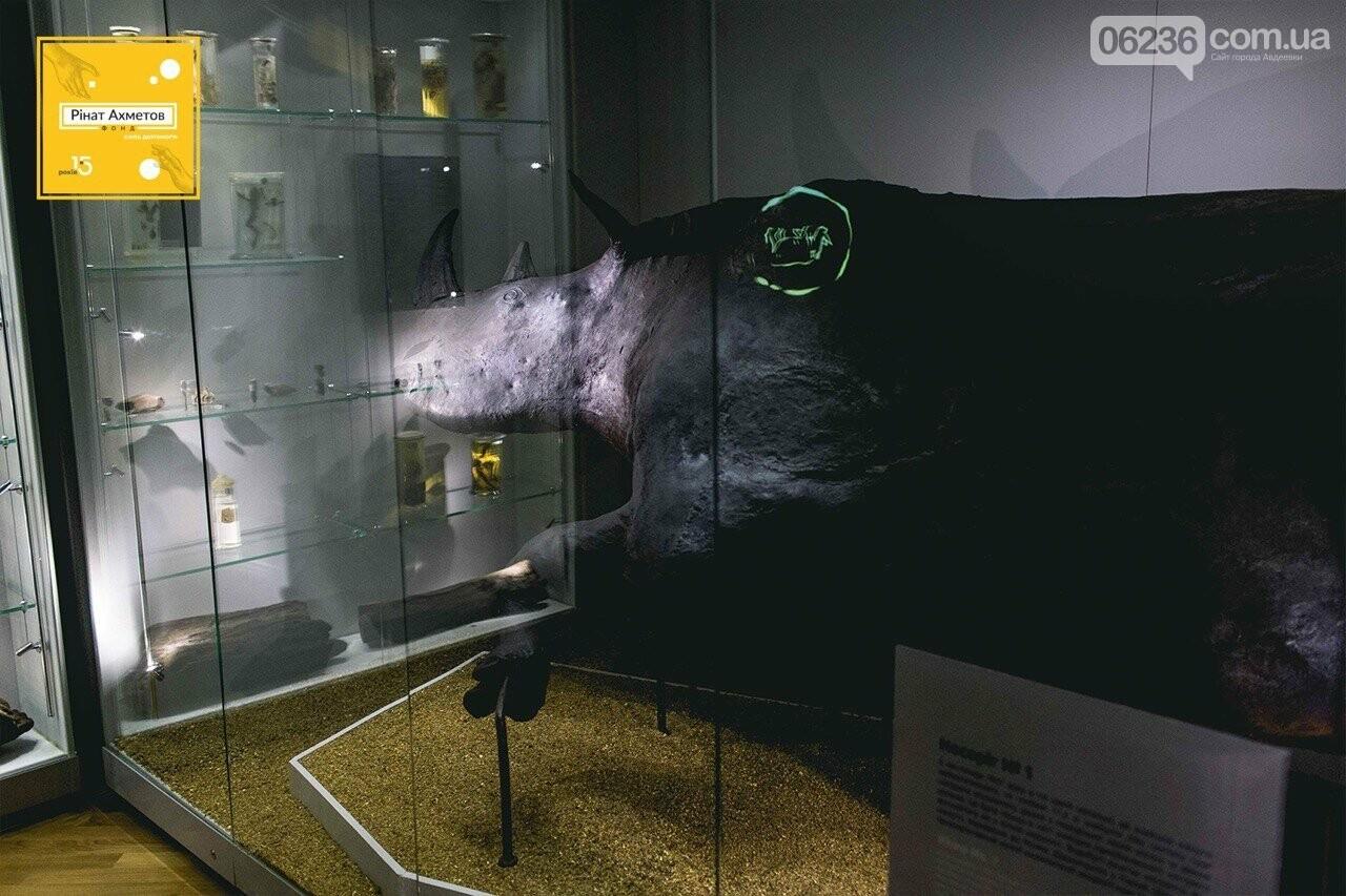 15 лет Фонду Рината Ахметова: спасти музеи Украины, фото-4