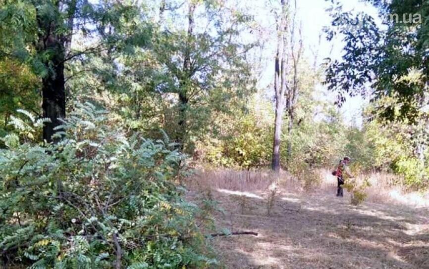 """Коммунальщики в """"чистый четверг"""" чистили от поросли парк возле четвертой школы, фото-2"""