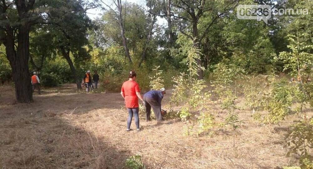 """Коммунальщики в """"чистый четверг"""" чистили от поросли парк возле четвертой школы, фото-1"""