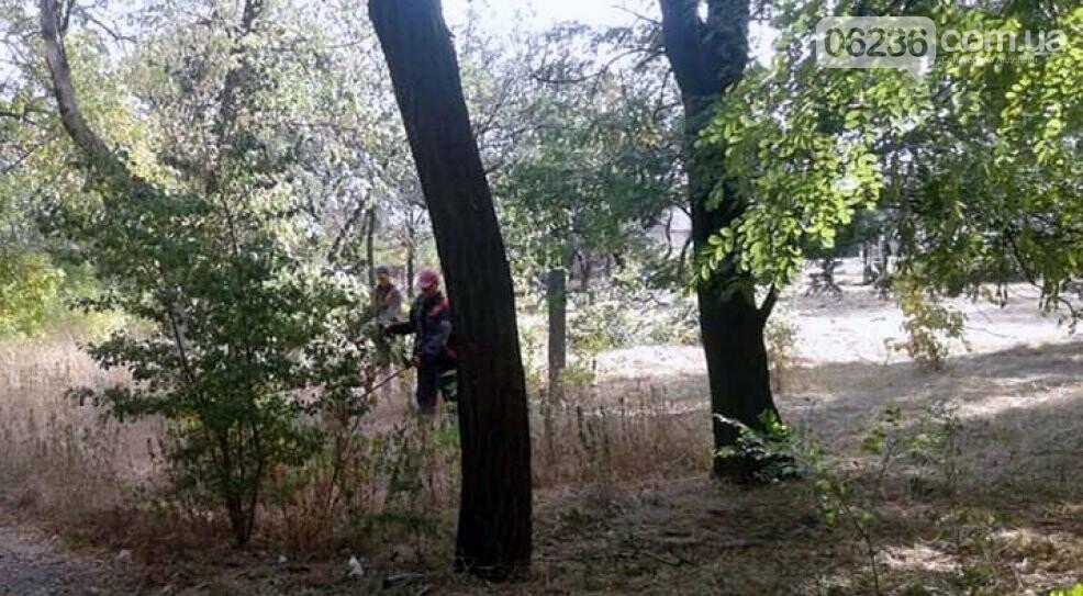"""Коммунальщики в """"чистый четверг"""" чистили от поросли парк возле четвертой школы, фото-3"""