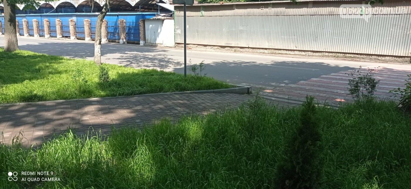 В Авдеевке горожане протаптывают тропинки прямо по газонной траве, фото-2